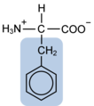 Phenylalanine w functional group highlighted.png