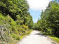 Pian della Rasa-paesaggio 03.jpg