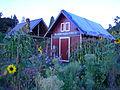 Picardo Farm 13.jpg