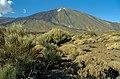 Pico del Teide 05(js).jpg