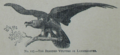 Picture Natural History - No 127 - The Bearded Vulture or Lammergeyer.png