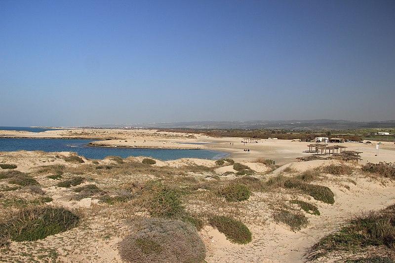 חוף הבונים