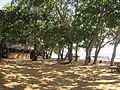 Plage aménagée à Grand Batanga.JPG
