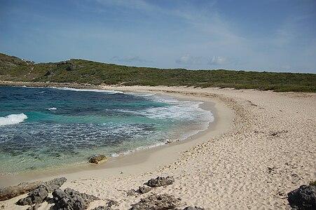 Plage des Grandes Salines Guadeloupe.JPG