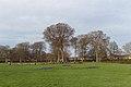 Play area, Norris Green Park 1.jpg