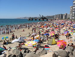 beach Viña Del Mar
