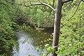 Plešická zátoka z Holoubku-alibaba - panoramio.jpg