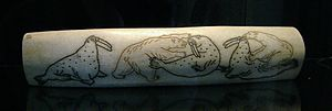 Walrus ivory - Engraved walrus tusk depicting polar bears attacking walrus, dating from the 1940s in Chukotka (Magadan Regional Museum).