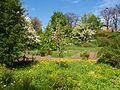 Poltava Botanical garden (110).jpg