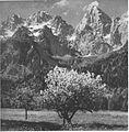 Pomlad v Martuljku 1940.jpg