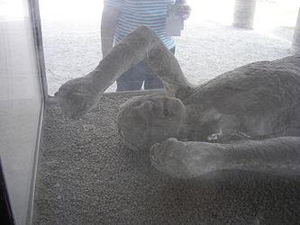 Pompeii macellum cast 2.jpg