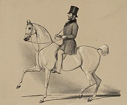 unknown: Henry Somerset, 7th Duke of Beaufort