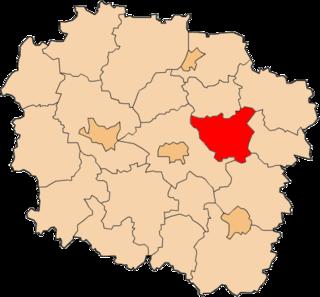Golub-Dobrzyń County County in Kuyavian-Pomeranian, Poland