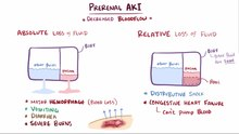 File:Prerenal acute kidney injury.webm