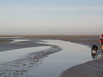 Flat coast - Wadden creek with exposed sandbar during an ebb tide