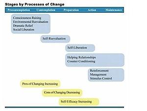 Transtheoretical model - Processes of change
