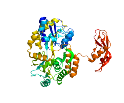 Protein CRHR1 PDB 3EHS.png