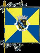 Flag of Estarreja