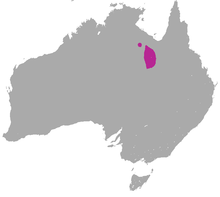 Purple-necked Rock Wallaby area.png