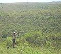 Quebrada de los Cuervos. - panoramio.jpg