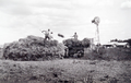 Queensland State Archives 4166 Stackbuilding at Clifton Darling Downs c 1935.png