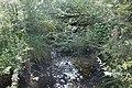 Réserve naturelle Marais Lavours Aignoz Ceyzérieu 110.jpg