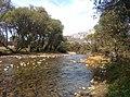 Río Luna por Santa Eulalia de las Manzanas 04.jpg