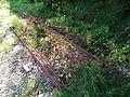 Rails Landunvez.jpg