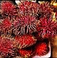 Rambutan Fruit aka Shoke Shoke..jpg