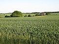 Ravens' Hall - geograph.org.uk - 1337822.jpg