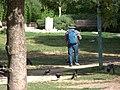 Ravens Feeder (7147583007).jpg