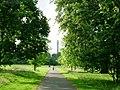 Regent's Park II - geograph.org.uk - 863249.jpg