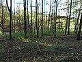 Remscheid - panoramio (14).jpg