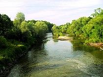 Rezerwat Dębina 015.JPG