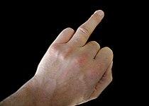 Ringvinger.jpg