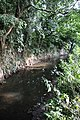 River Lark, Bury St Edmunds - geograph.org.uk - 936705.jpg