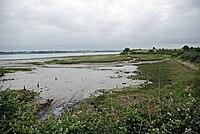 River Stour - geograph.org.uk - 1364434.jpg