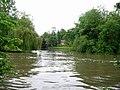 River Thames upstream of Goring - geograph.org.uk - 177688.jpg