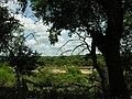 River view (394300678).jpg
