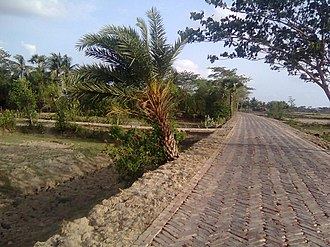 Road - A bricked road in Bangladesh