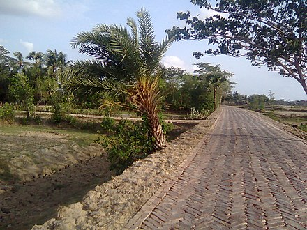 A bricked road in Bangladesh Road side view at chalna, Khulna - 33.jpg