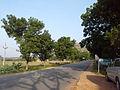 Road to Yadagirigutta near Raigir 01.jpg