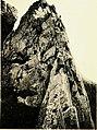 Rock-climbing in the English Lake District (1900) (14590720509).jpg