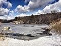 Rock Pond (97040073).jpeg