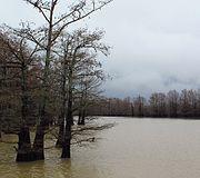 Roebuck Lake