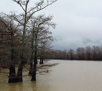 Itta Bena, Mississippi - Roebuck Lake in Itta Bena