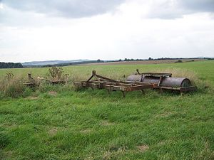 English: Roller, West Winterslow, Wiltshire, U...