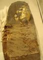 RomanEraMummyOfYoungGirl-CloseUp RosicrucianEgyptianMuseum.png