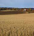 Rural (4048209216).jpg