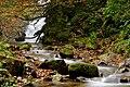 Saja-Besaya, otoño 4.jpg